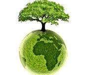 logo-ecologie.jpg