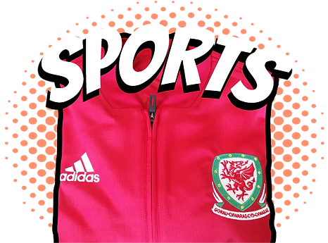 Adidas red Welsh sports top