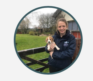 Spring into Summer 2/5/19 Reaseheath College Equestrian Centre - Announcing our veterinary professio