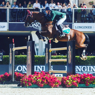 Event guest insights! Anthony Condon International Show jumper