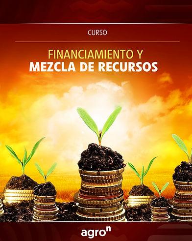 financiamiento y mezcla de recursos_REDE