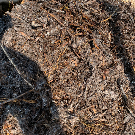How to Hot Compost Food Waste and Wood Chips