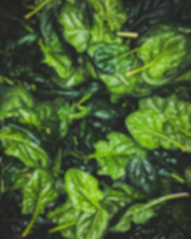 We will have spinach available for the f