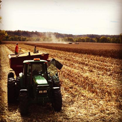 Grain Cart.jpeg