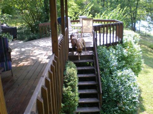 deck(2).jpg