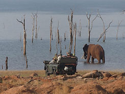 rhino-safari-camp-game-drives2-768x576.j