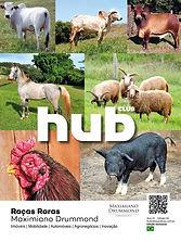 Revista Hub Arlindo interativa.jpg