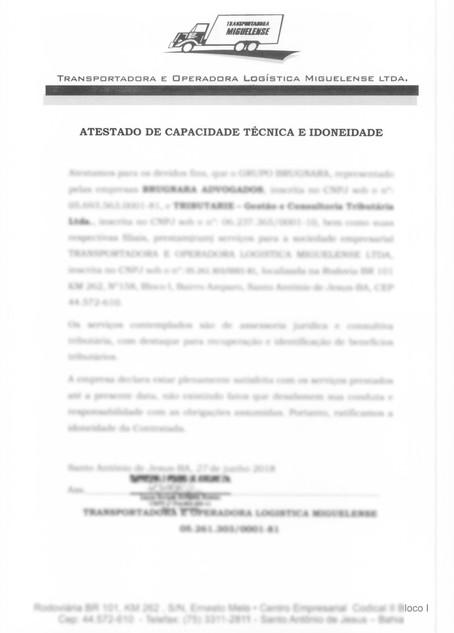 TRANSPORTADORA E OPERADORA LOGISTICA MIG
