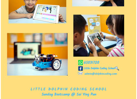 Coding @ Babington with Little Dolphins Coding School