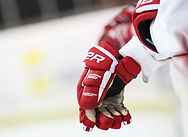 hockey-2304987_1280_2048x.progressive.jp