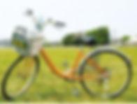 捷安特》6速 鋁合金淑女車 價格:NT. 150元.jpg