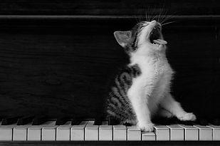 Jemini Music Voice Piano Lessons