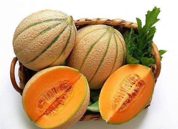 Glace Melon