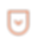 icons_new_orange-05.png