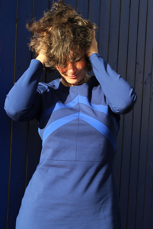 chaton blauw-cobalt
