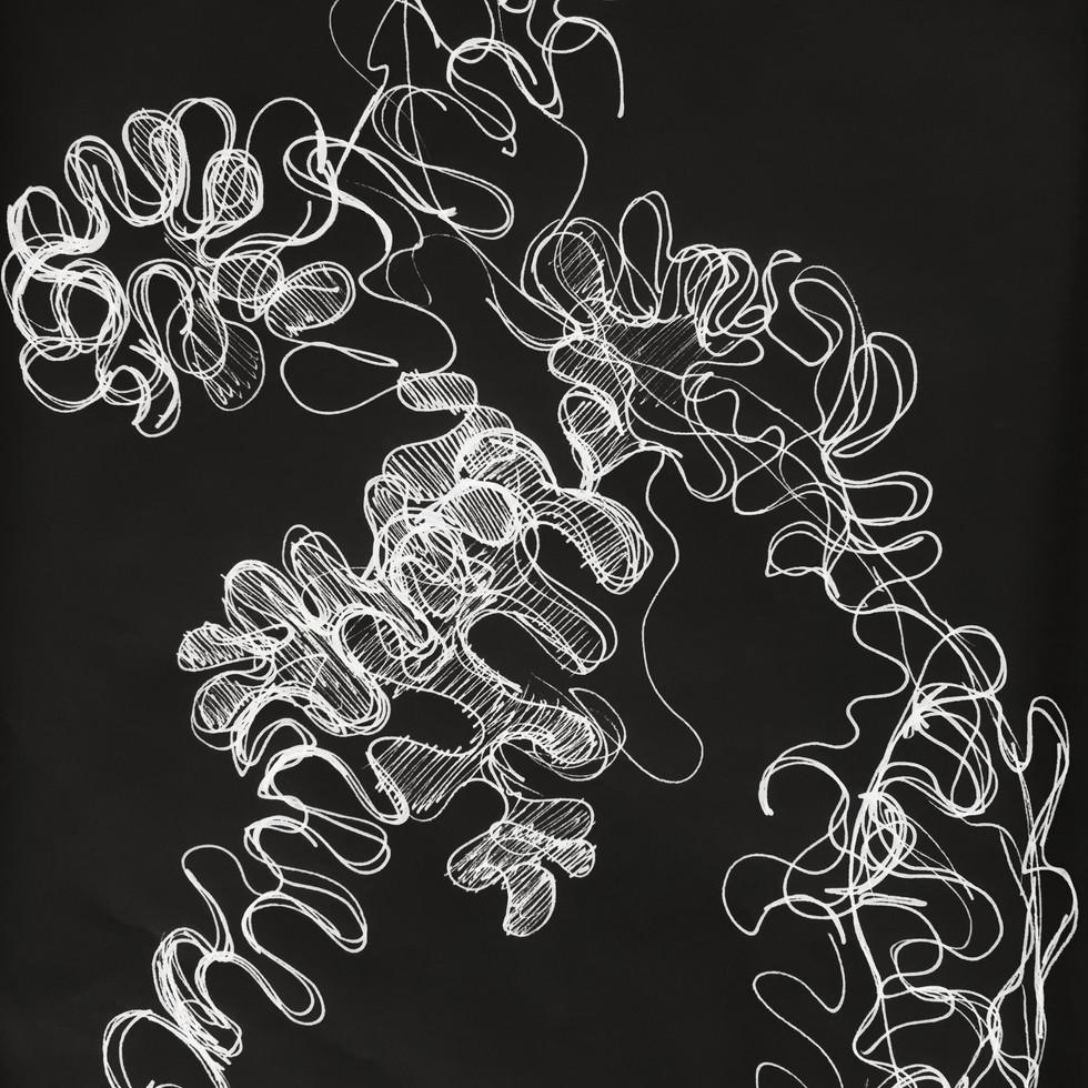 Study of Plants-Ruffles