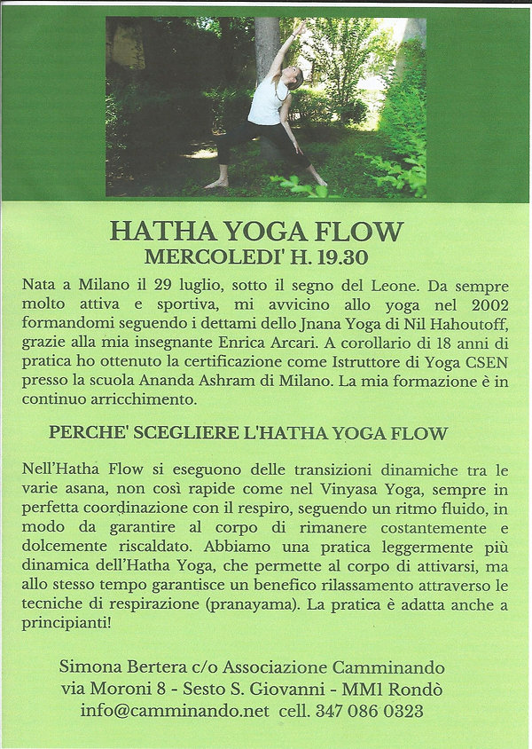 hatha yoga flow immagine.jpg
