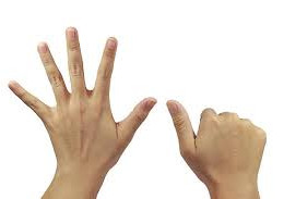 6 doigts
