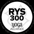 RYS300 Logo.png