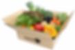 BBQ野菜.png