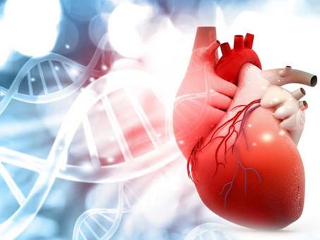 Laatste onderzoek: Vapen is niet geassocieerd met hart- en vaatziekten.
