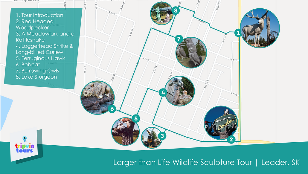 Larger than Life Wildlife Sculpture Tour