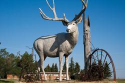 Leader, SK | KIDS Wildlife Sculpture Tour