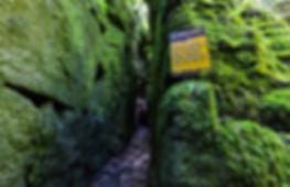 scenic adventure caves collingwood