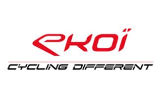 logo ekoi.png