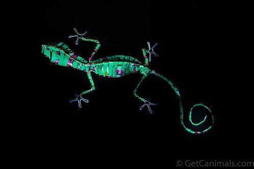 Turquoise Jade Green Gecko