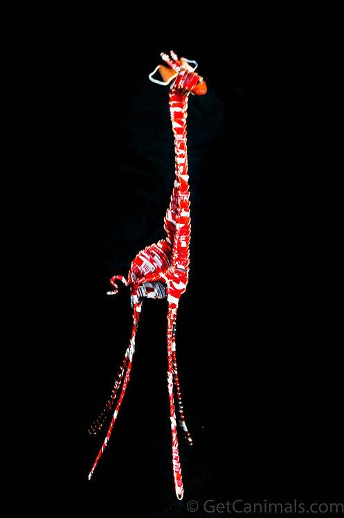 Regular Red and White Giraffe