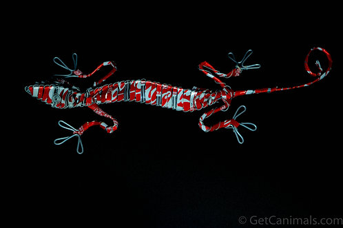 Red & White Gecko