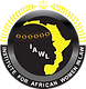 African Women in Law