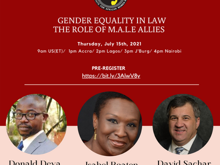 Webinar: Gender Equality in Law: The Role of M.A.L.E Allies