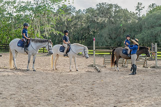 Eden Farm Ocala Hunter Jumper Riding Lessons