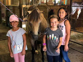 Eden Farm Ocala Summer Riding Camps