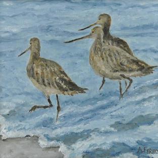 """Shore Birds, 8.5"""" x 9"""""""