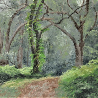 """Forest Trail, 16"""" x 20"""""""