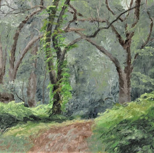 """Forest Trail, 16"""" x 24"""""""