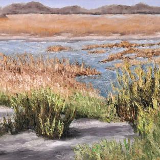 """Wetlands, 16"""" x 20"""""""