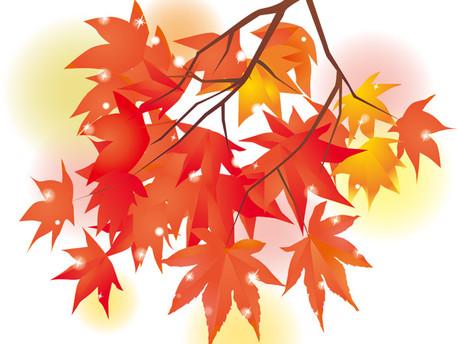 秋になると出やすい症状