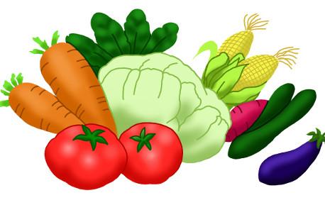 何故野菜を食べなくてはいけないのか