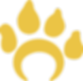 Yellow- Single Paw Print.png
