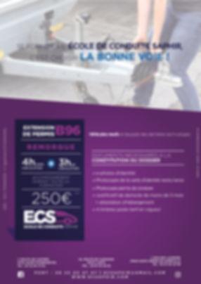 flyer extension B962.jpg