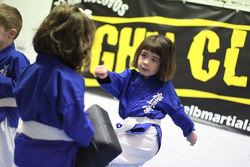 Malvern - Kids Karate 4.jpg