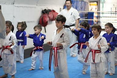 Malvern - Kids Karate.jpg