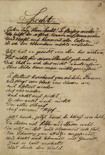 Manuscrito do poema A PACA de Fritz Müller