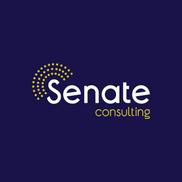 senate consulting