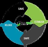 Save Establish Shape Release.PNG