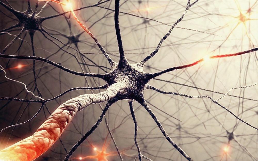 Neurons on fire